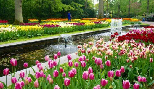 キューケンホフ公園|2019年版行き方(アクセス)、見ごろ、チケットなど。チューリップ畑の絶景を観にオランダへ行こう!
